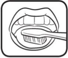 brushing-step-4